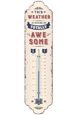 Vintage Thermometer - Awesome Weather