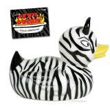 Duckie  Zebra 11391