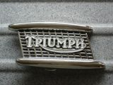 Buckle B-Triumph Kühler