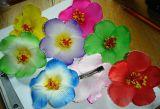 Haarclips mit Blume gross- verschidene Farben