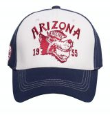 Trucker Cap Flex von King Kerosin - Arizona / white-blue