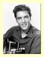 Magnet - Elvis Guitar / 14272